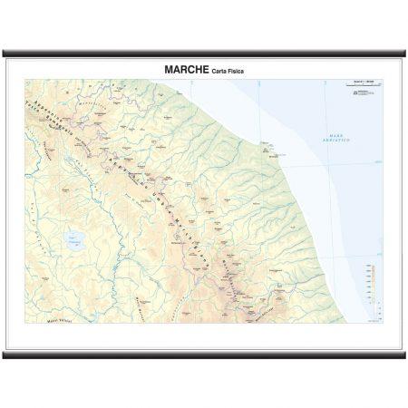 Marche - Belletti Editore MS22PL