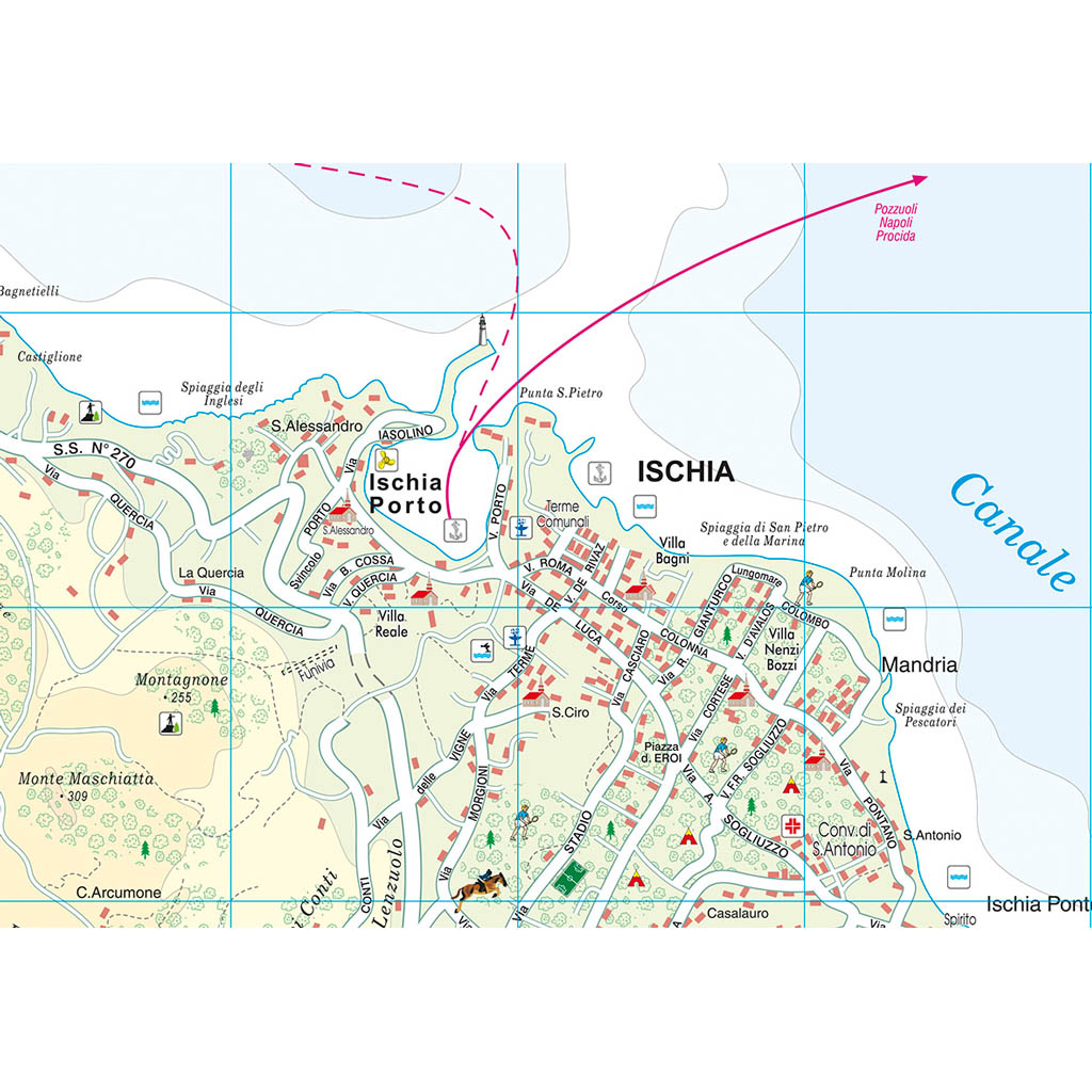 Ischia Procida - Belletti Editore V209