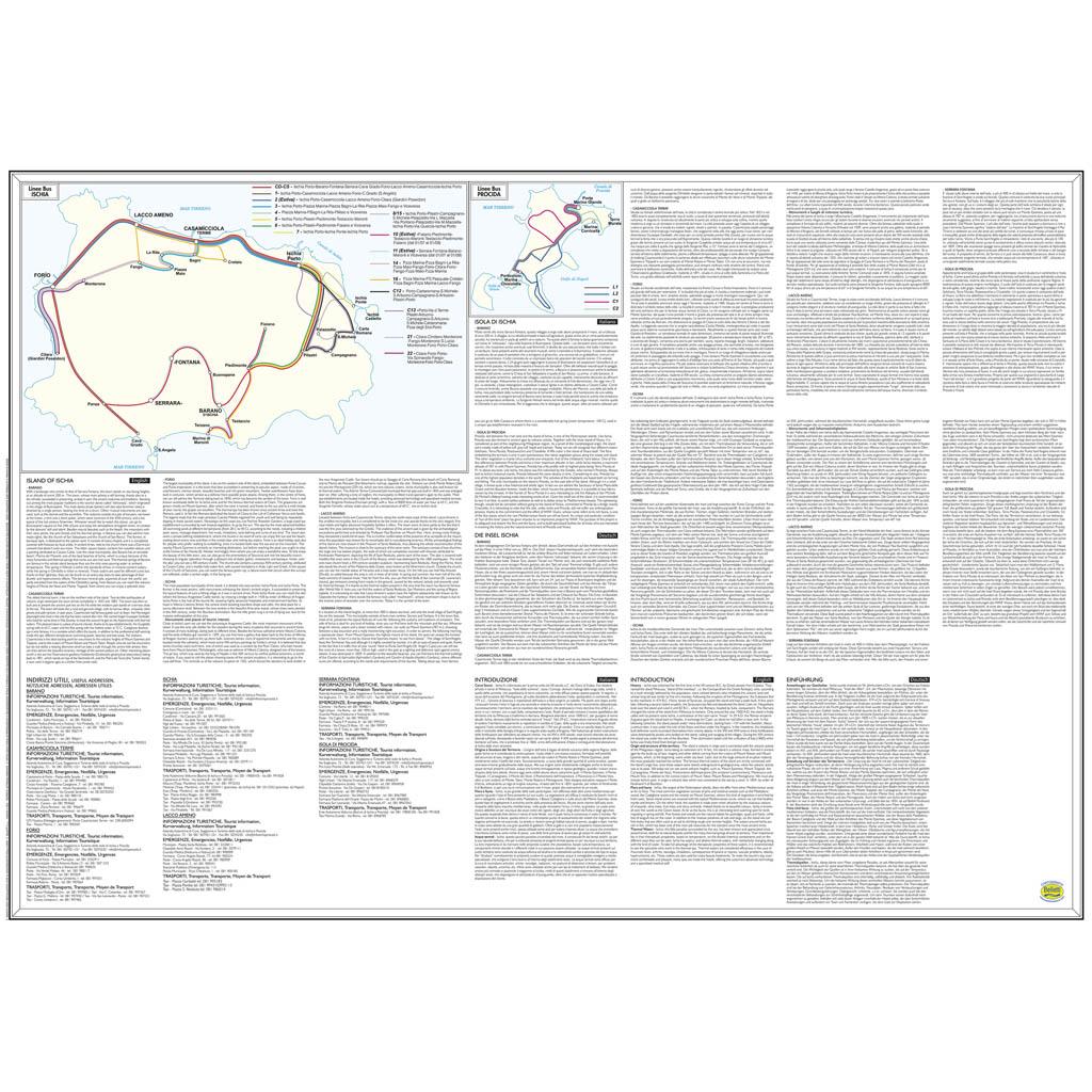 Ischia Procida - Belletti Editore V238